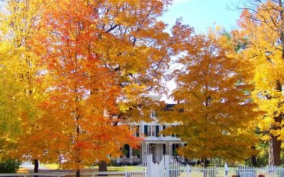 Prepare Your Home for Fall in 6 Easy Ways