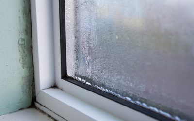 8 Signs of Mold in the Home